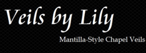 veils by lily Promo Codes