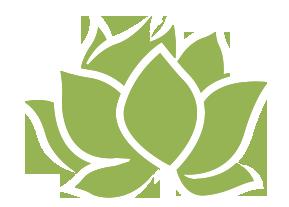 white lotus home Promo Codes